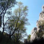 Сербия достопримечательности