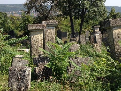 Старинное_кладбище_Сербия
