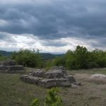 Виды_Сербии
