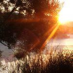 Солнечные лучи фото