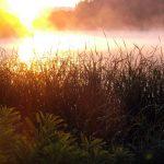 Оранжевый восход фото